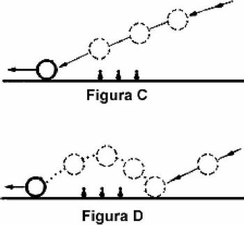 Figure C e D  | Biliardi Cavicchi